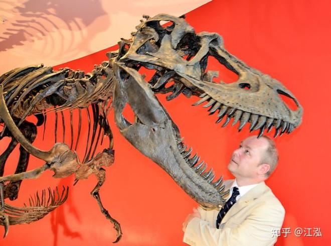 Phát hiện ra xác ướp khủng long có dấu chân hình móng ngựa tại Hoa Kỳ - Ảnh 3.