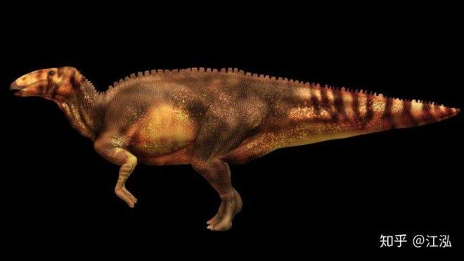Phát hiện ra xác ướp khủng long có dấu chân hình móng ngựa tại Hoa Kỳ - Ảnh 6.