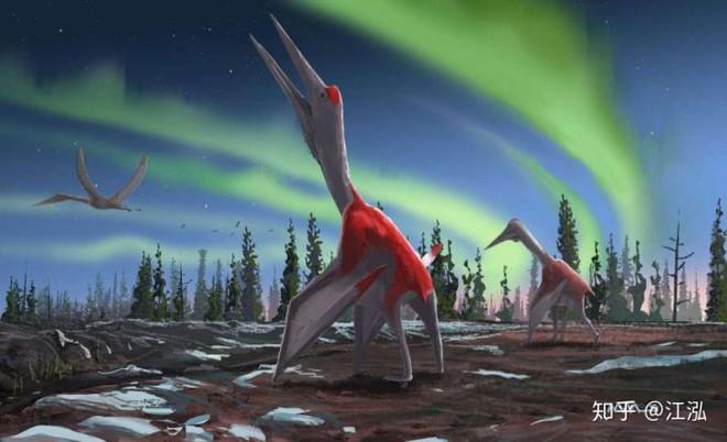 Canada phát hiện ra loài khủng long bay mới, có kích thước tương đương một chiếc máy bay nhỏ - Ảnh 10.
