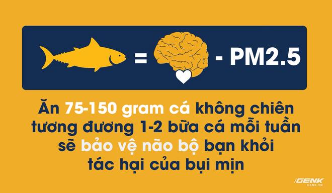 Ăn 1-2 bữa cá mỗi tuần để bảo vệ não bộ bạn khỏi tác hại của bụi mịn và ô nhiễm không khí - Ảnh 1.