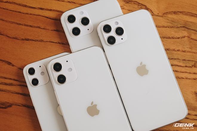 Trên tay mô hình iPhone 12, iPhone 12 Max, iPhone 12 Pro và iPhone 12 Pro Max tại Việt Nam - Ảnh 5.