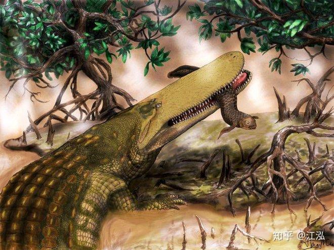 Stomatosuchus inermis: Loài cá sấu cổ đại có thể nuốt chửng cả thế giới - Ảnh 7.