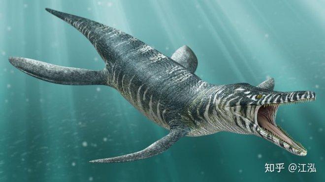 Hóa thạch của quái vật biển kỷ Jura được tìm thấy trên núi của Thụy Sĩ - Ảnh 10.
