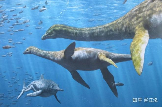 Hóa thạch của quái vật biển kỷ Jura được tìm thấy trên núi của Thụy Sĩ - Ảnh 12.