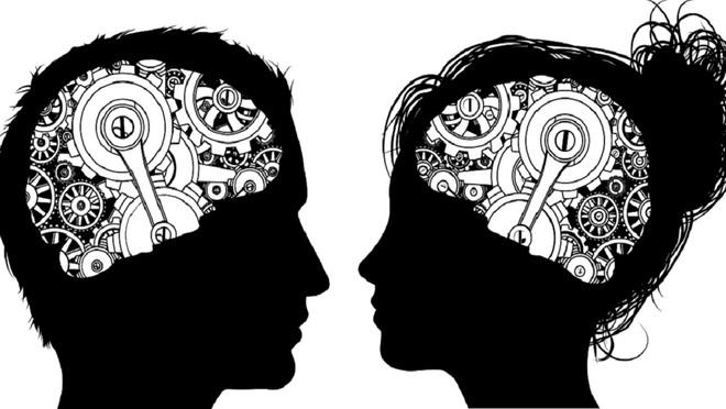 Rốt cuộc não bộ nam giới và phụ nữ có gì khác nhau, và tại sao lại có sự khác biệt đó? - Ảnh 2.