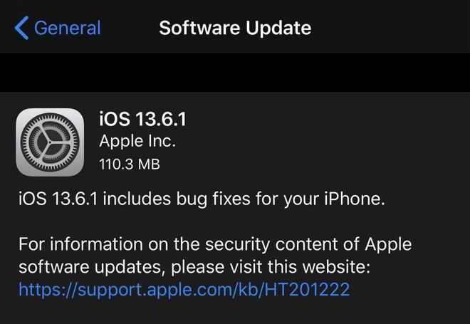 Apple phát hành iOS 13.6.1: Khắc phục lỗi màn hình xanh trên iPhone và lỗi đầy bộ nhớ - Ảnh 1.