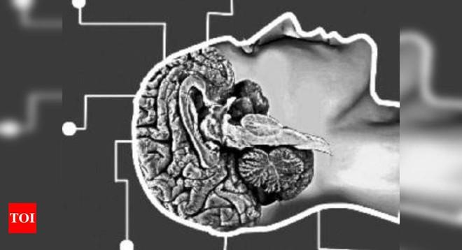 Khi một bệnh nhân được xác định chết não, họ đã thực sự chết hay chưa? - Ảnh 4.