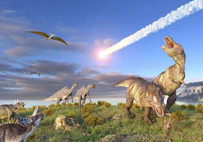 Tại sao loài khủng long đã thống trị Trái Đất hơn 100 triệu năm lại không sinh ra trí tuệ như loài người? - Ảnh 1.