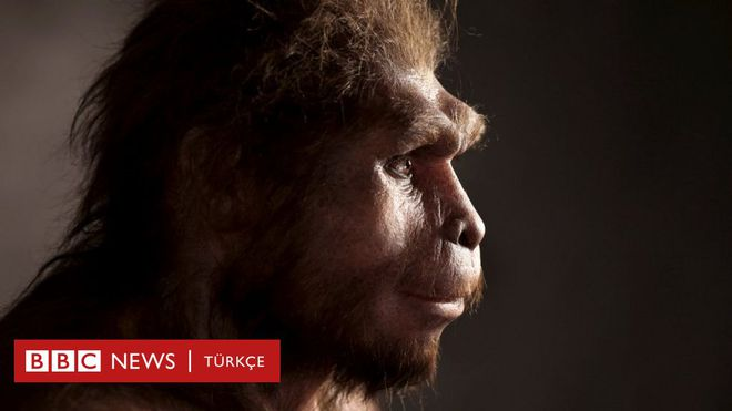 Các nhà khoa học phát hiện ra một tổ tiên bí ẩn của loài người, mang những gen chưa từng được xác định - Ảnh 1.