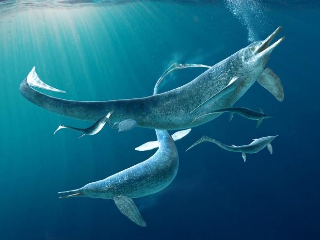 Hóa thạch tiết lộ loài bò sát săn mồi tối thượng trong thời đại khủng long - Ảnh 4.