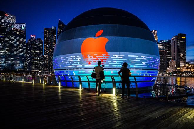 Quả cầu phát sáng khổng lồ này sẽ là Apple Store nổi đầu tiên trên thế giới - Ảnh 5.