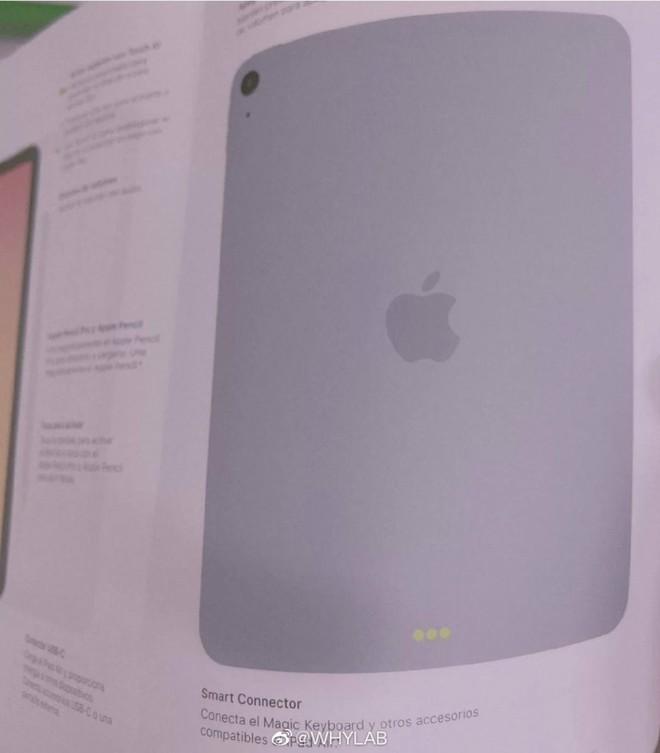 iPad Air 4 lộ diện: Thiết kế giống iPad Pro, Touch ID tích hợp phím nguồn, camera đơn - Ảnh 4.