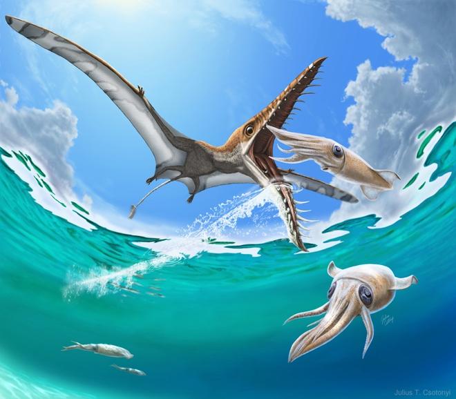Rhamphorhynchus: Loài thằn lằn bay tí hon sở hữu hàm răng của tử thần - Ảnh 1.