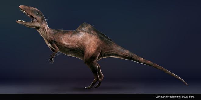 Loài khủng long ăn thịt có bướu kỳ lạ được tìm thấy ở Tây Ban Nha - Ảnh 10.