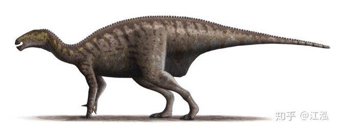 Loài khủng long ăn thịt có bướu kỳ lạ được tìm thấy ở Tây Ban Nha - Ảnh 11.