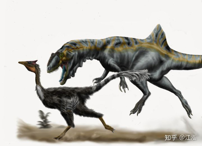 Loài khủng long ăn thịt có bướu kỳ lạ được tìm thấy ở Tây Ban Nha - Ảnh 12.