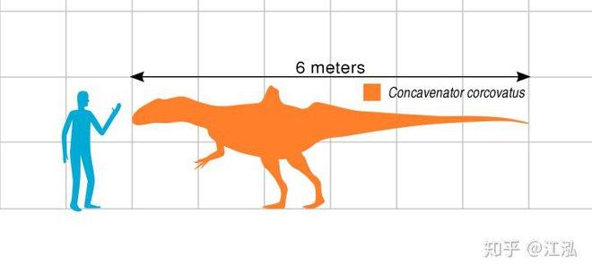 Loài khủng long ăn thịt có bướu kỳ lạ được tìm thấy ở Tây Ban Nha - Ảnh 7.