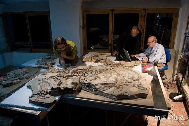Loài khủng long ăn thịt có bướu kỳ lạ được tìm thấy ở Tây Ban Nha - Ảnh 4.