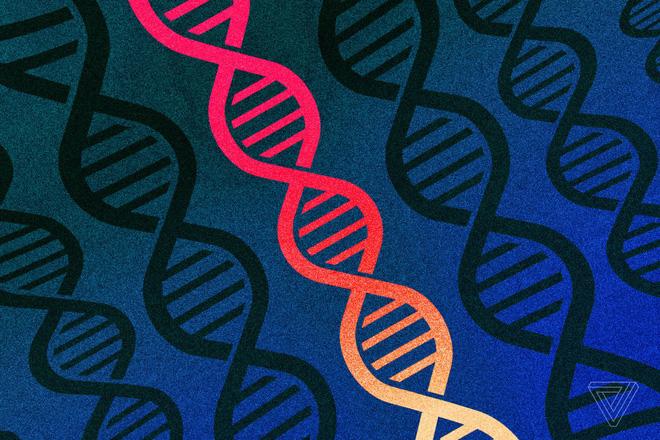 Các nhà khoa học phải đổi tên mã gen của con người, vì phần mềm Excel liên tục đọc sai thành dạng ngày tháng - Ảnh 1.