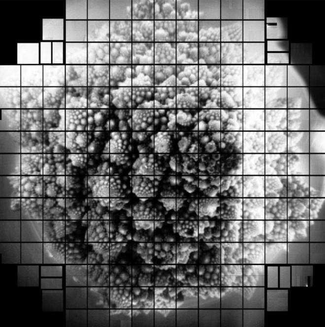 Lần đầu tiên nhà khoa học chụp được tấm hình có độ phân giải 3.200MP bằng cảm biến hình ảnh siêu to khổng lồ - Ảnh 5.