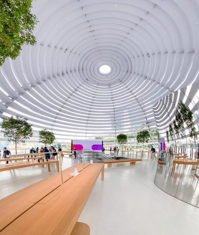 Tham quan Apple Store hình cầu nổi trên mặt nước vừa mới được khai trương tại Singapore - Ảnh 6.