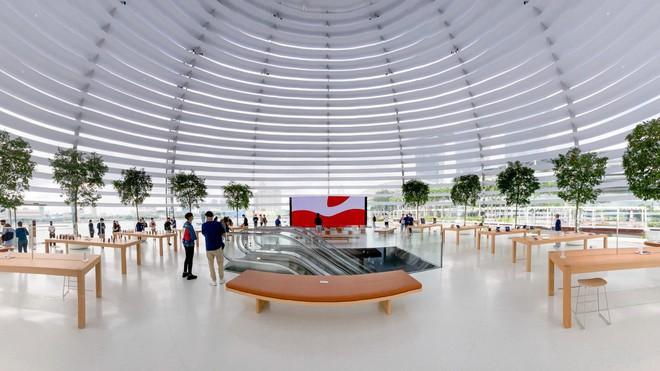 Tham quan Apple Store hình cầu nổi trên mặt nước vừa mới được khai trương tại Singapore - Ảnh 9.