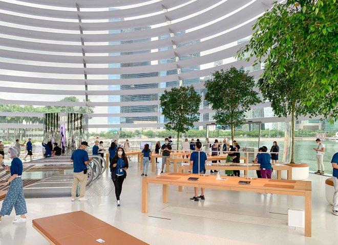 Tham quan Apple Store hình cầu nổi trên mặt nước vừa mới được khai trương tại Singapore - Ảnh 10.