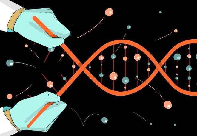 Hai năm sau bê bối chỉnh sửa gen người ở Trung Quốc, một cánh cửa hẹp đang được bỏ ngỏ cho những đứa trẻ CRISPR tương lai - Ảnh 2.