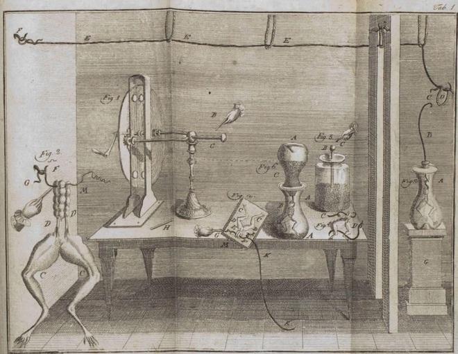 Vào những năm 1800 nhân loại đã cố gắng tạo ra Frankenstein ngoài đời thực bằng cách kích điện xác chết - Ảnh 2.
