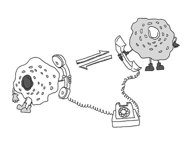 Làm sao để giải thích cho một đứa trẻ 4 tuổi hiểu: Tế bào là gì? - Ảnh 7.