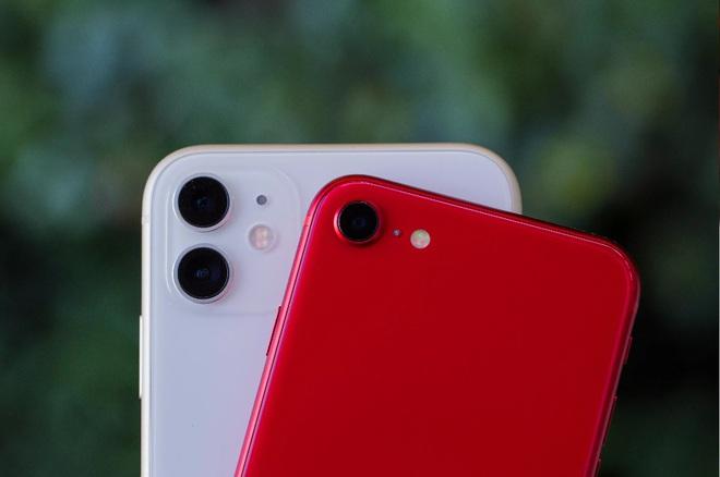 iPhone SE, iPhone 11 và iPhone XR - Những bước đi chiến lược tài tình nhất của thị trường di động trong nhiều năm trở lại - Ảnh 2.