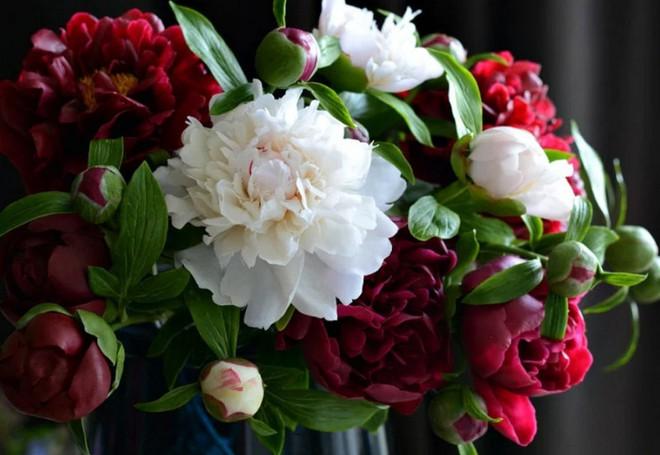 Nhìn những bông hoa mềm mại như thật thế này, bạn sẽ không thể ngờ chất liệu tạo nên chúng là gì đâu! - Ảnh 1.