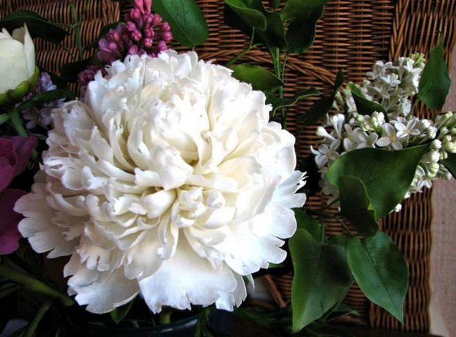 Nhìn những bông hoa mềm mại như thật thế này, bạn sẽ không thể ngờ chất liệu tạo nên chúng là gì đâu! - Ảnh 6.