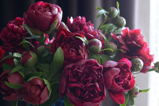 Nhìn những bông hoa mềm mại như thật thế này, bạn sẽ không thể ngờ chất liệu tạo nên chúng là gì đâu! - Ảnh 10.