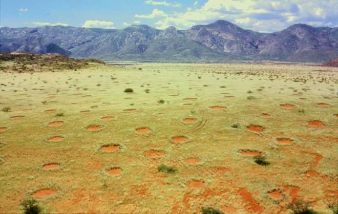 Bí ẩn về những vòng tròn cổ tích tại Namibia - Ảnh 1.