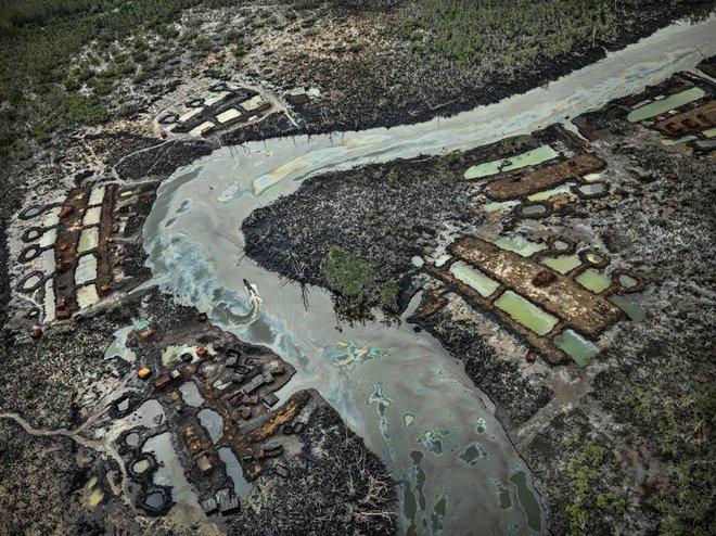 [Video] Kỷ nhân sinh Anthropocene và những vết sẹo con người rạch vào Đất Mẹ - Ảnh 6.