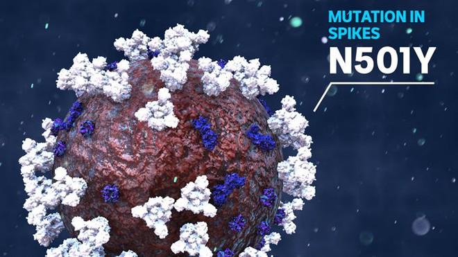 Giải thích con đường biến chủng của virus SARS-CoV-2 bằng kiến thức sinh học lớp 9 - Ảnh 1.