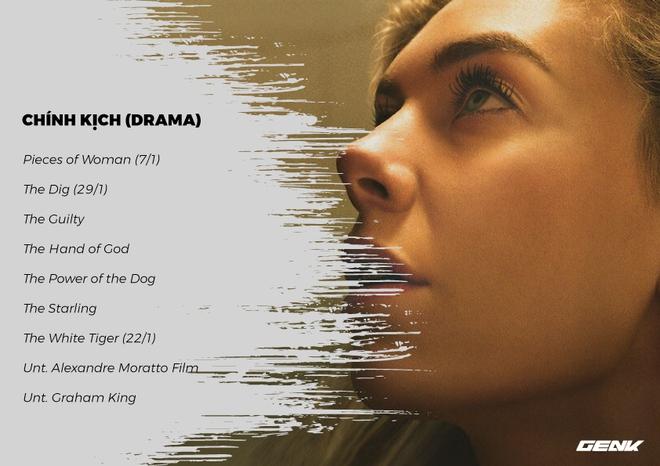 Mới đầu năm nhưng Netflix đã công bố luôn danh sách phim lẻ 2021: 71 tác phẩm, tuần nào cũng có phim mới cho khán giả tha hồ cày - Ảnh 8.
