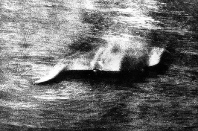 Kết cục bất ngờ này sẽ xảy ra với quái vật hồ Loch Ness nếu nó thực sự tồn tại ngoài đời - Ảnh 2.