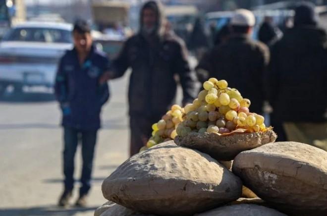 Lạ lùng phương pháp sử dụng đất ẩm để bảo quản nho tươi lâu tới ít nhất 6 tháng của người Afghanistan - Ảnh 1.