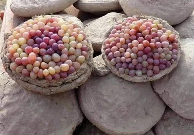 Lạ lùng phương pháp sử dụng đất ẩm để bảo quản nho tươi lâu tới ít nhất 6 tháng của người Afghanistan - Ảnh 3.