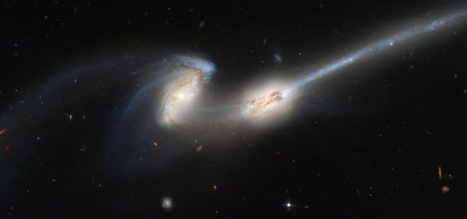 Thiên hà có đuôi này đang chết, mỗi ngày rò rỉ ra không gian lượng vật chất tương đương 10.000 ngôi sao - Ảnh 2.