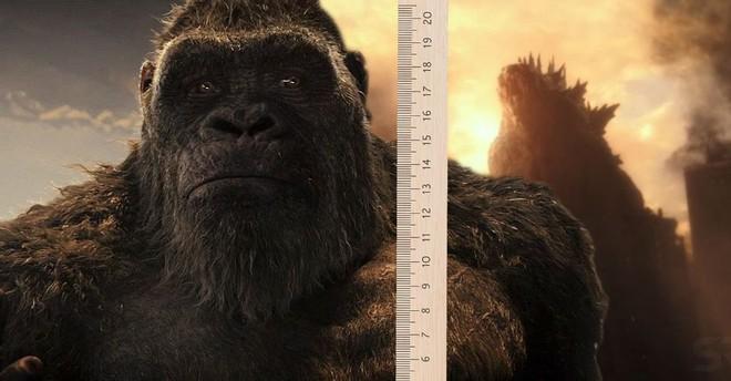 Vì sao Kong bỗng chốc bự ngang Godzilla: Chú khỉ đột dậy thì thành công, hay vị Vua quái vật là hàng pha-ke cỡ nhỏ? - Ảnh 1.