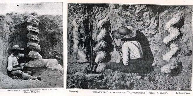 Ai là người đã làm ra cái vặn nút chai của quỷ cao hơn hai mét này từ hàng triệu năm trước? - Ảnh 2.