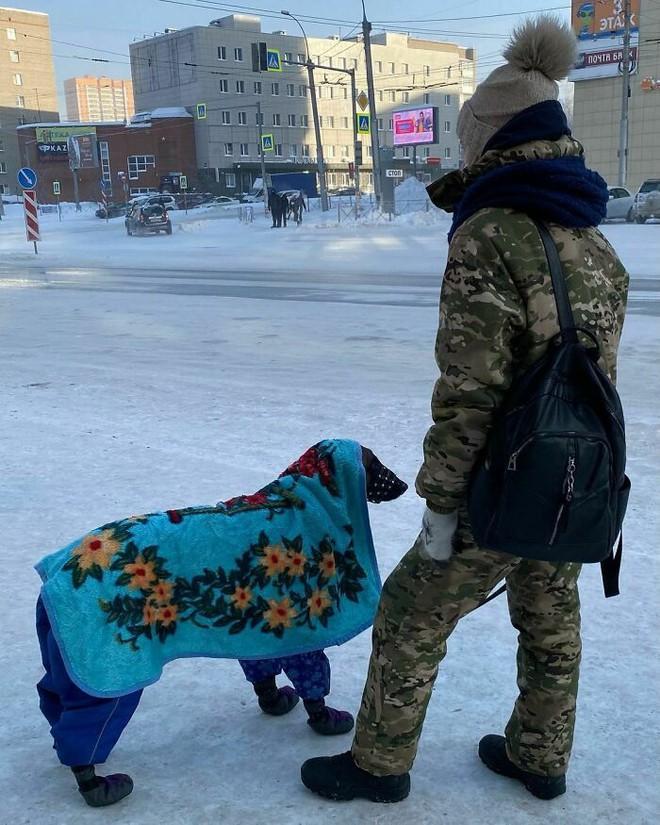 Những bức ảnh cho thấy thời tiết ở Nga lạnh vô đối như thế nào - Ảnh 4.