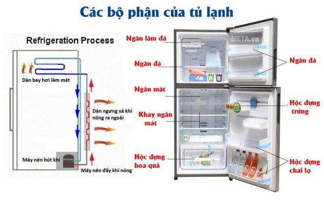 Tủ lạnh đầy ự hay tủ lạnh trống không: Cái nào sẽ tốn điện hơn? - Ảnh 3.