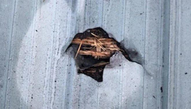 Thiên thạch rơi xuyên mái nhà trúng đầu giường khi đang ngủ, người phụ nữ may mắn sống sót nhờ một con chó - Ảnh 3.