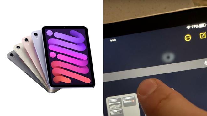 iPad Mini 6 lại dính thêm lỗi đổi màu và biến dạng trên màn hình LCD - Ảnh 1.
