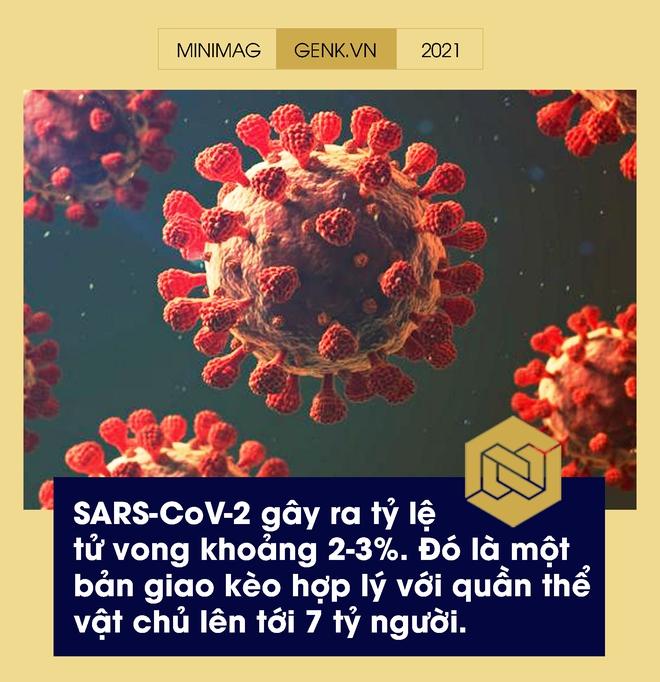 Một biên niên sử về virus: Từ những thiên thần của tiến hóa tới cơn ác mộng COVID-19 - Ảnh 19.