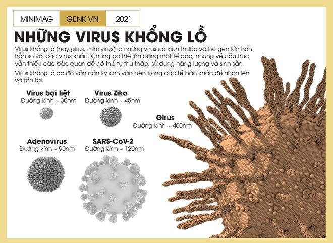 Một biên niên sử về virus: Từ những thiên thần của tiến hóa tới cơn ác mộng COVID-19 - Ảnh 8.